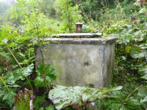 Brunnendesinfektion - Gegen Bakterien, Pilze und Sporen