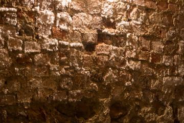 feuchte Kellerwand
