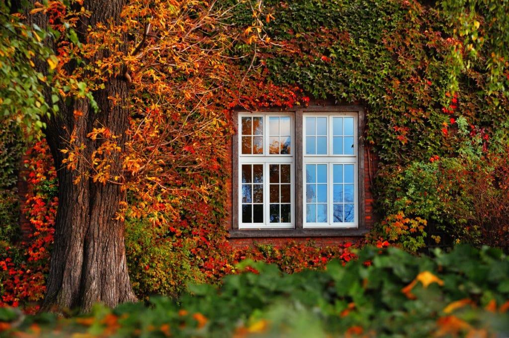 Haus mit Herbstlaub